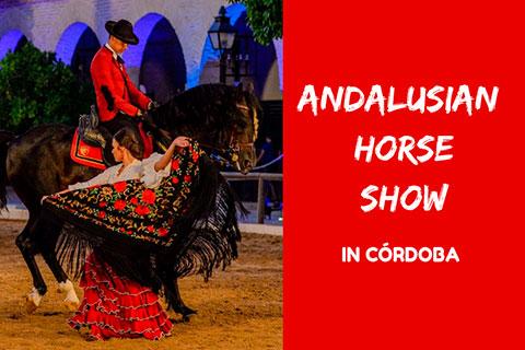 horse show spain