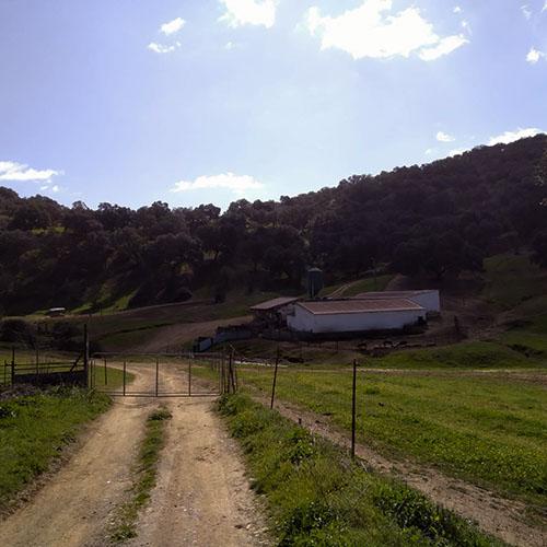 countryside sierra morena